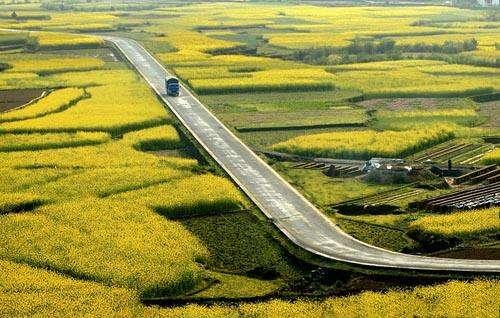 上海市农村公路管理办法